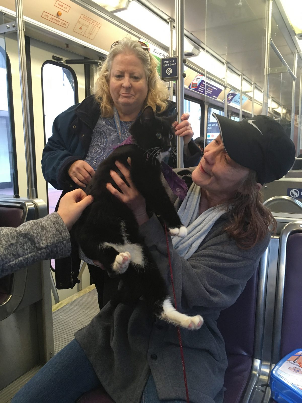Trimet Rider Has Fans- and Plays Along- Great Ambassador!